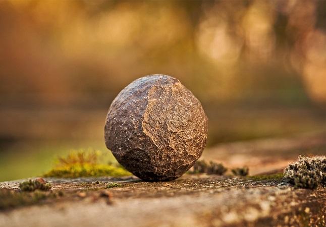 steen.jpg
